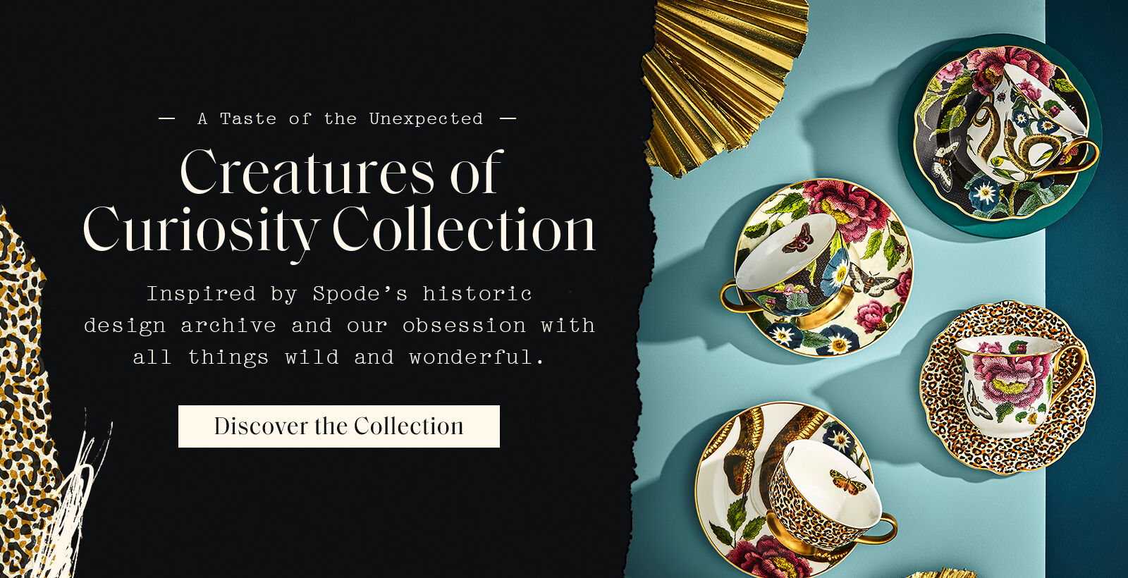 Discover Creatures of Curiosty